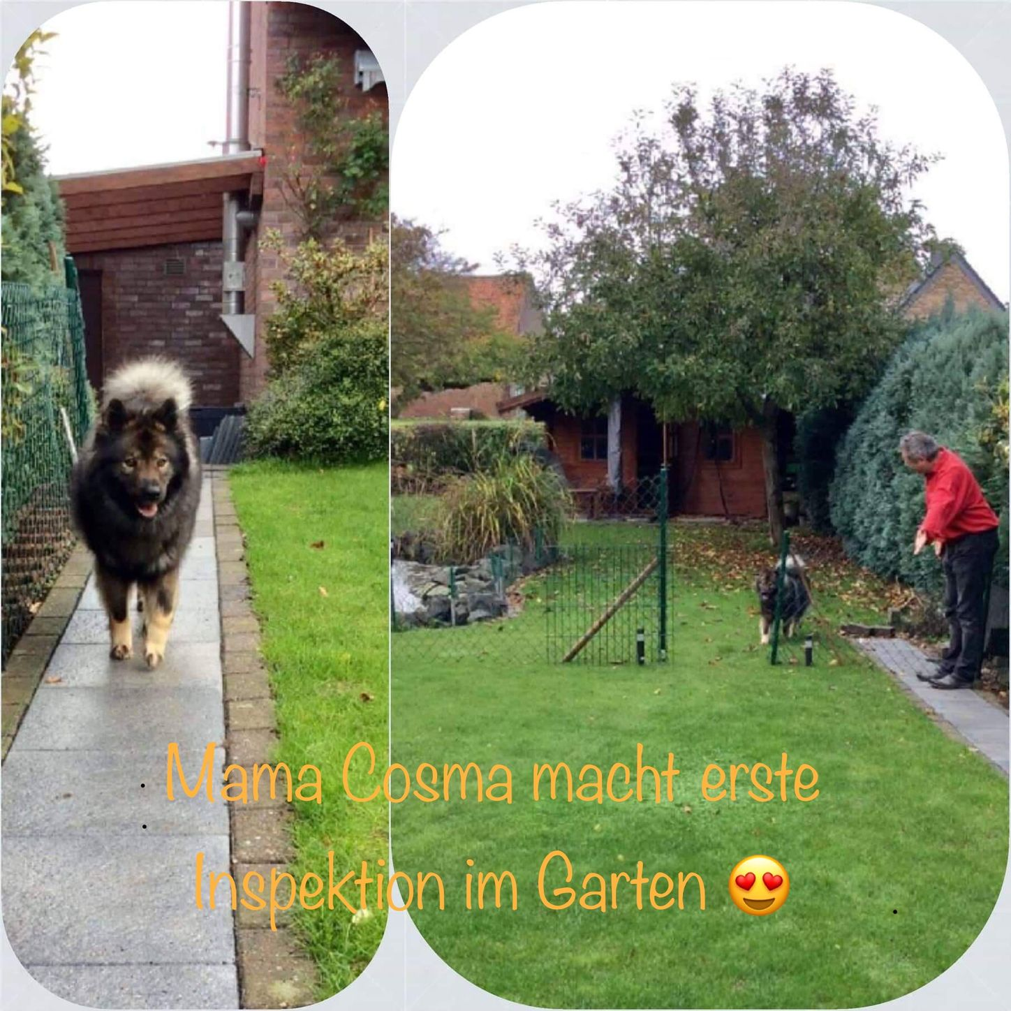 Garteninspektion